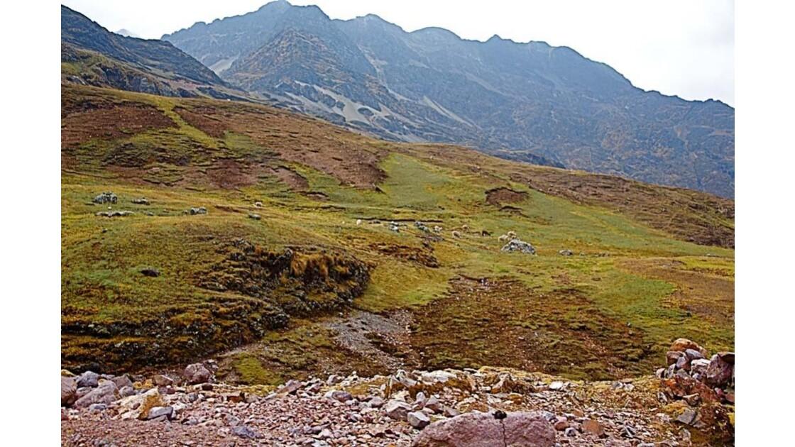 0041 la vallée de Larès