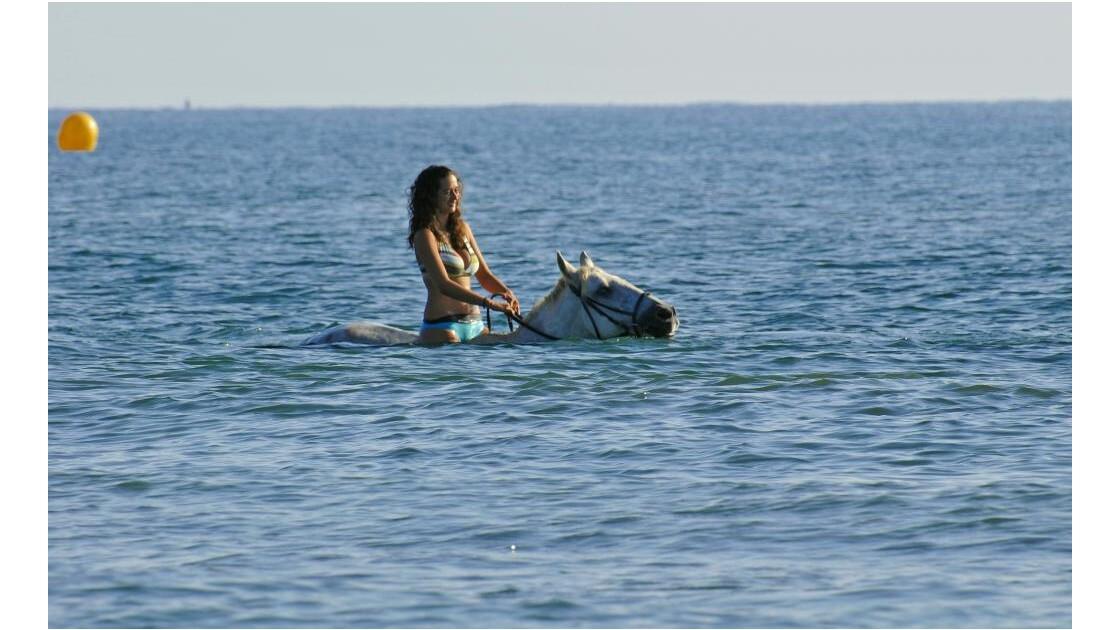 Baignade à cheval