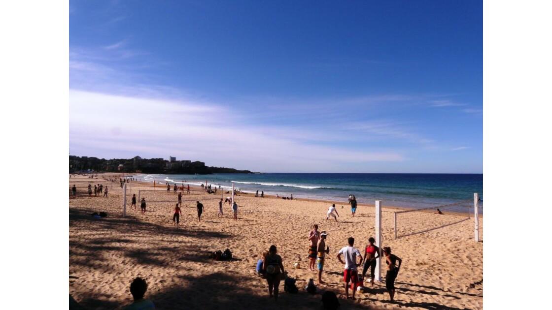 Manly beach, paradis du beach volley