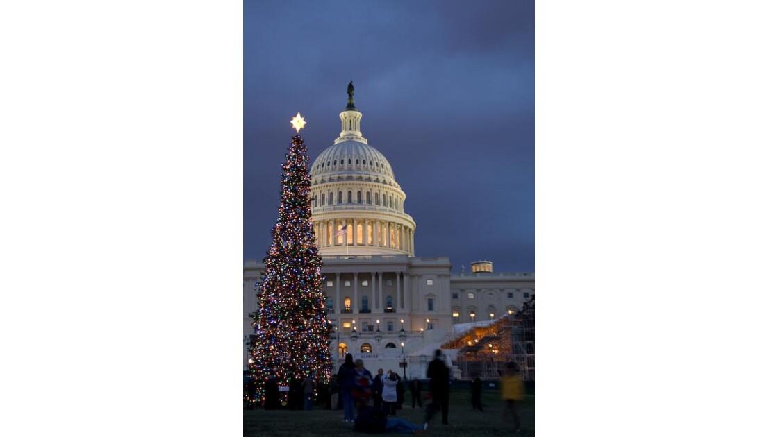 Capitol_Wash__D_C..jpg
