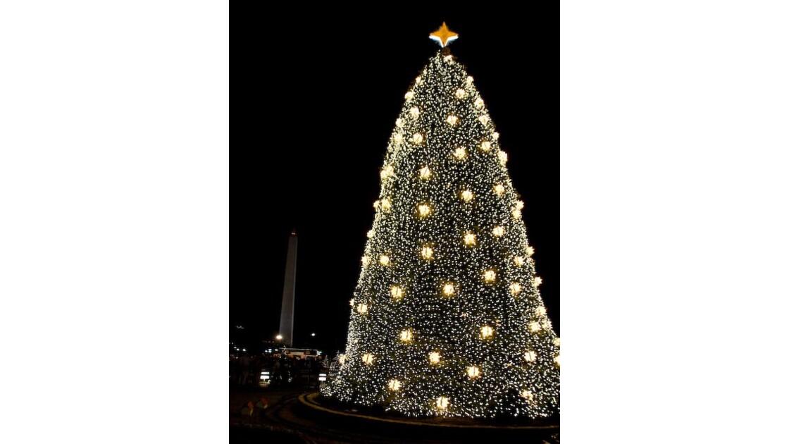 National_Christmas_Tree..jpg