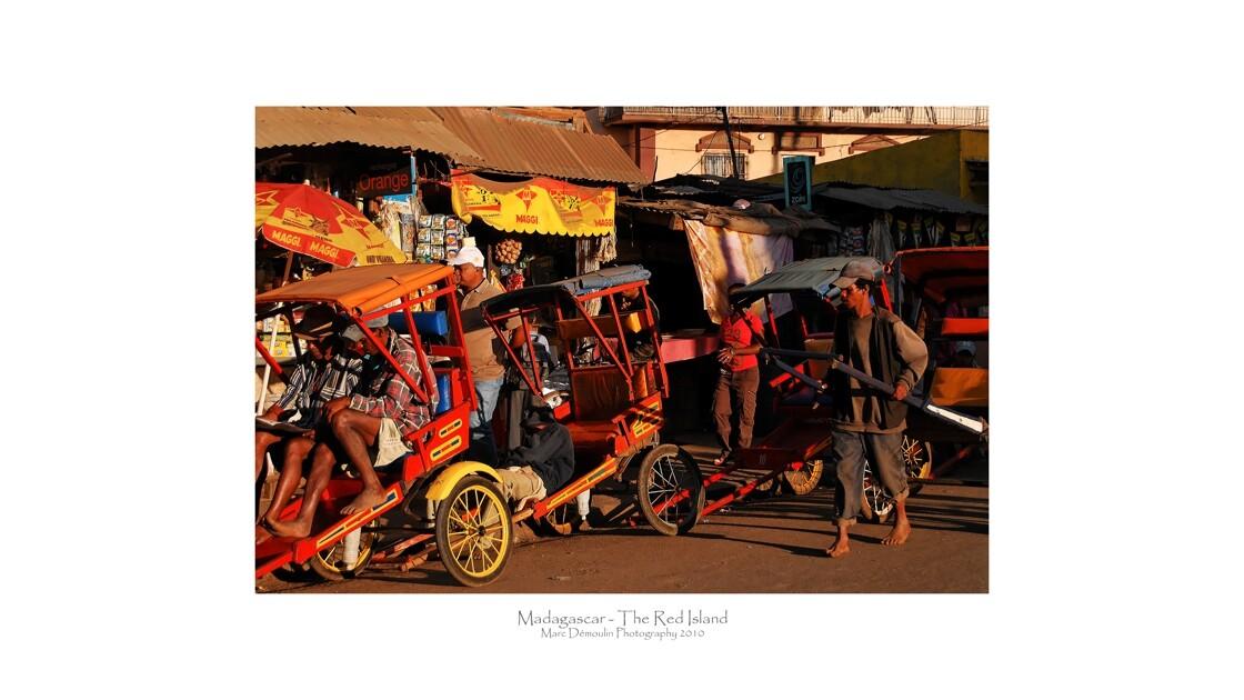 Madagascar 241