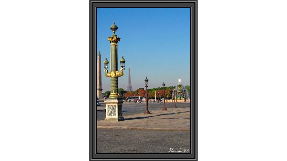 Les cactus de la Concordes (Paris)