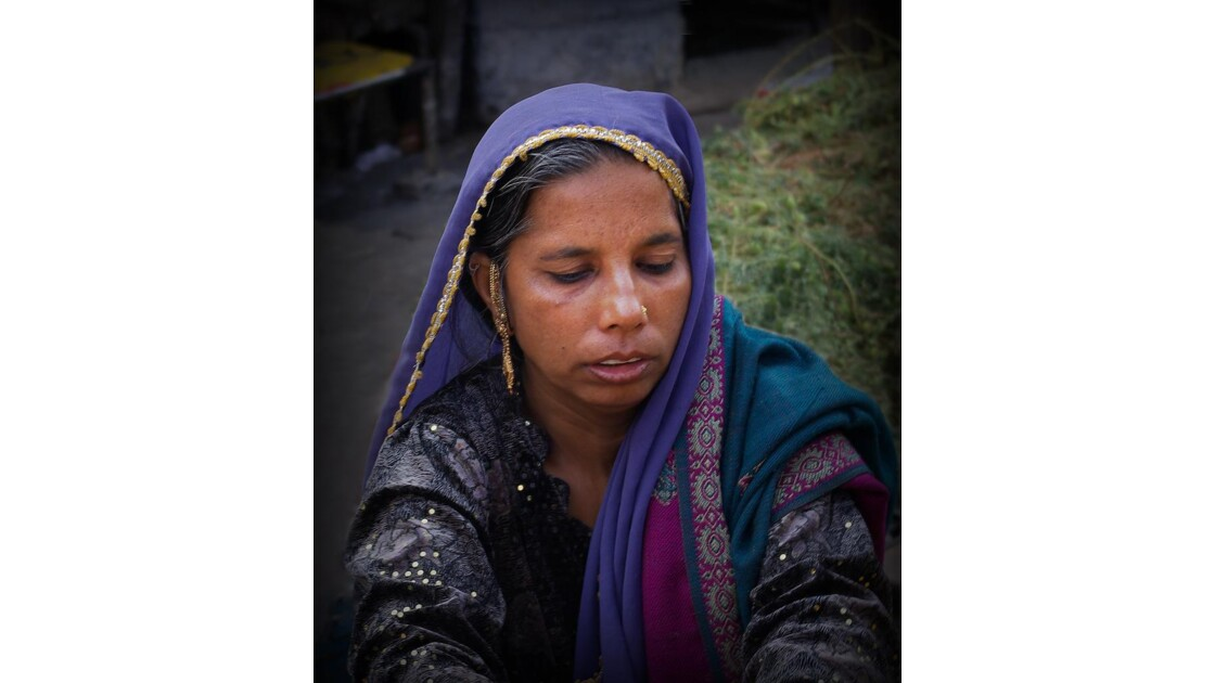 au marché d'Udaipur.jpg