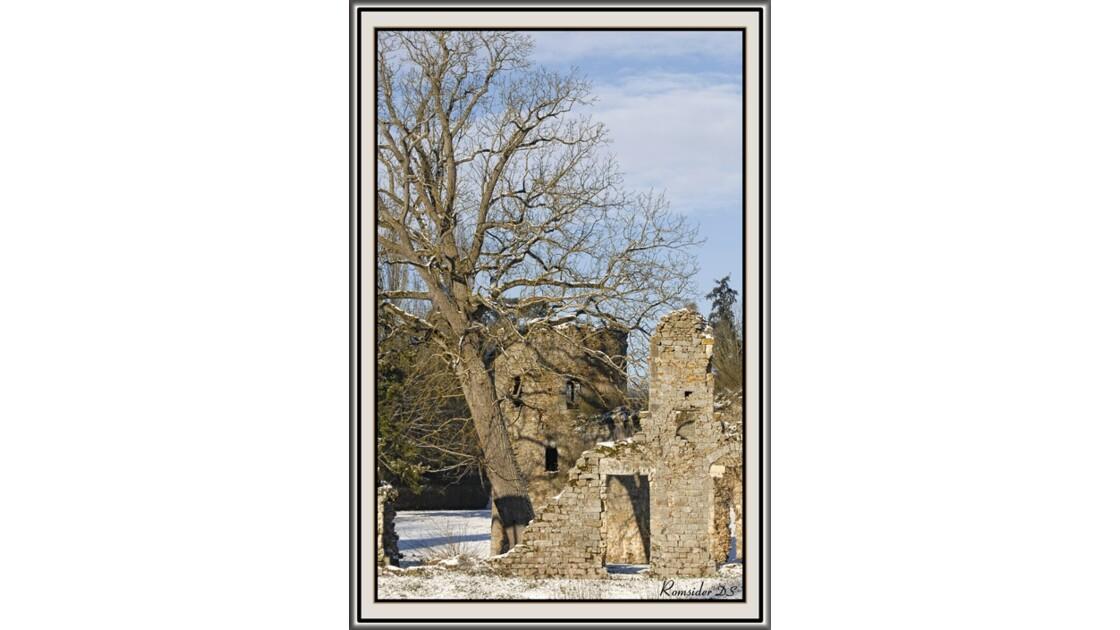 Château du Vivier sous la neige 4