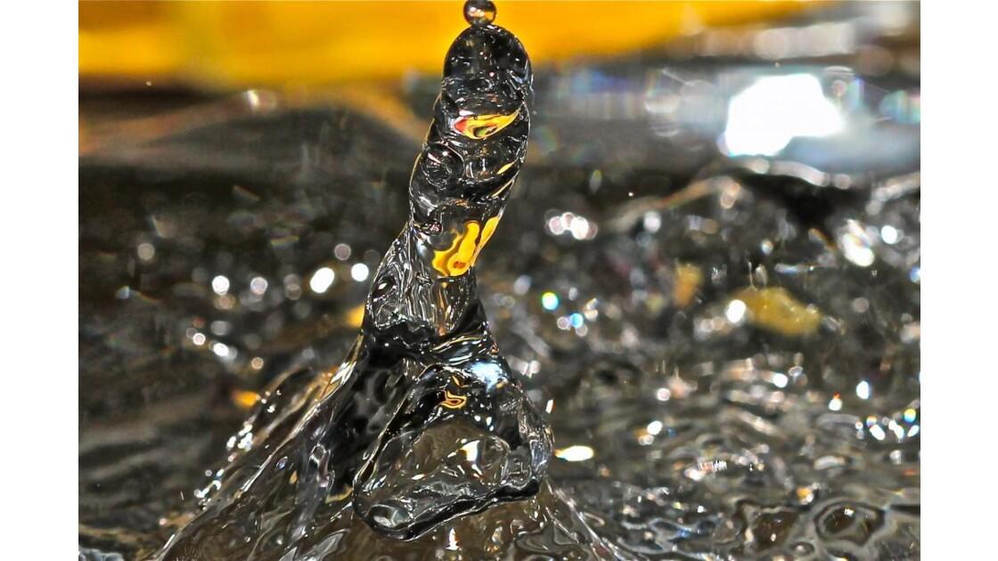 Sculpture aquatique n*2