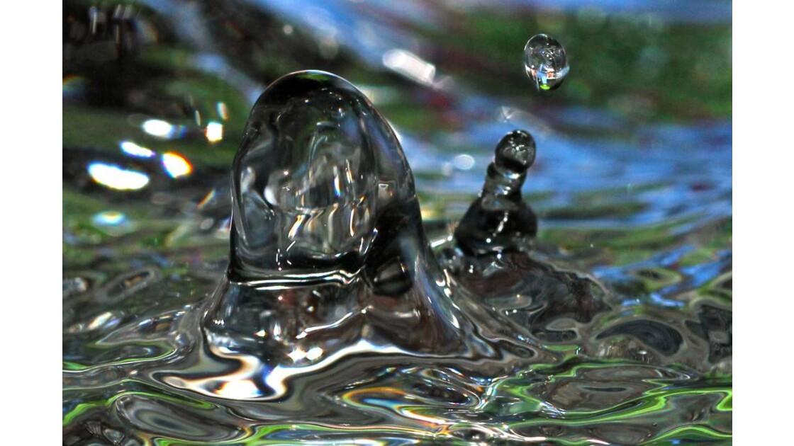 Sculpture aquatique n*4