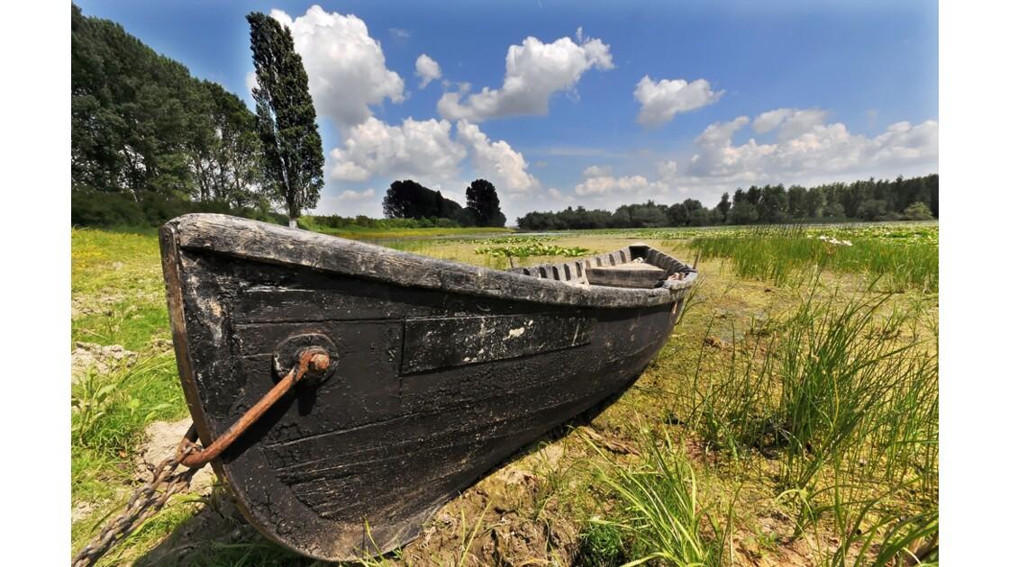 Barque du delta