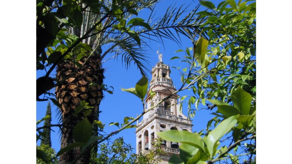 Mezquita : Torre de Alminar