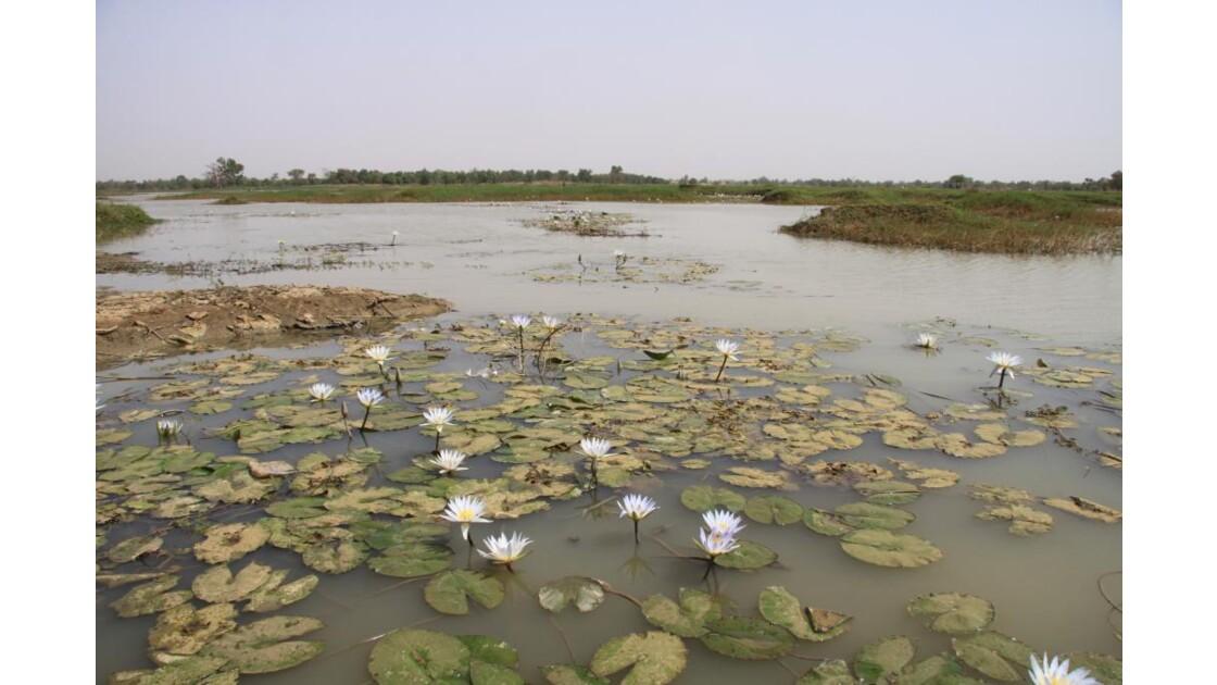 Barrage de Ouagadougou