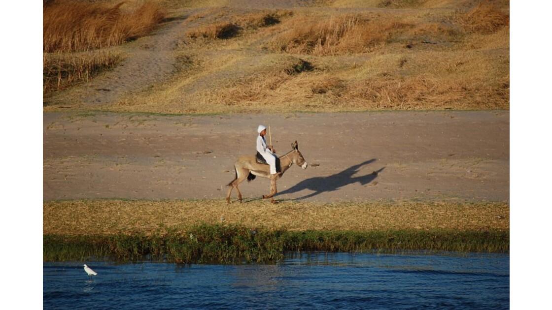 Jeune homme à dos d'âne