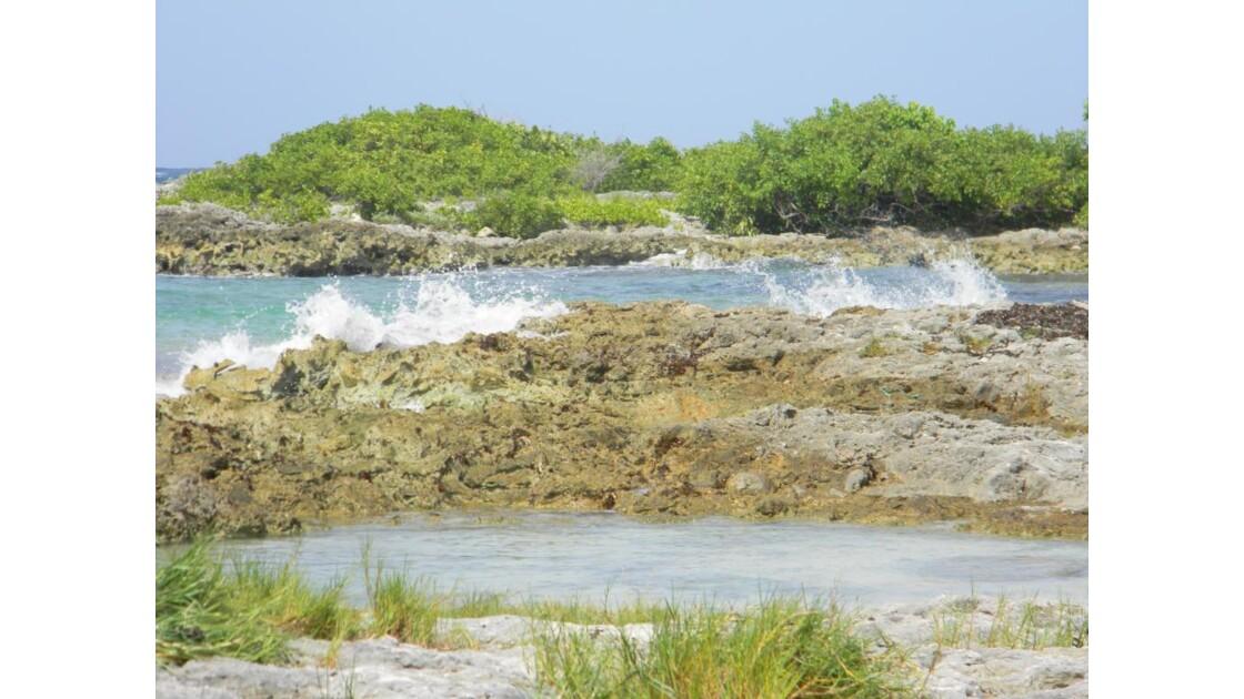 Anse à l'eau (4)