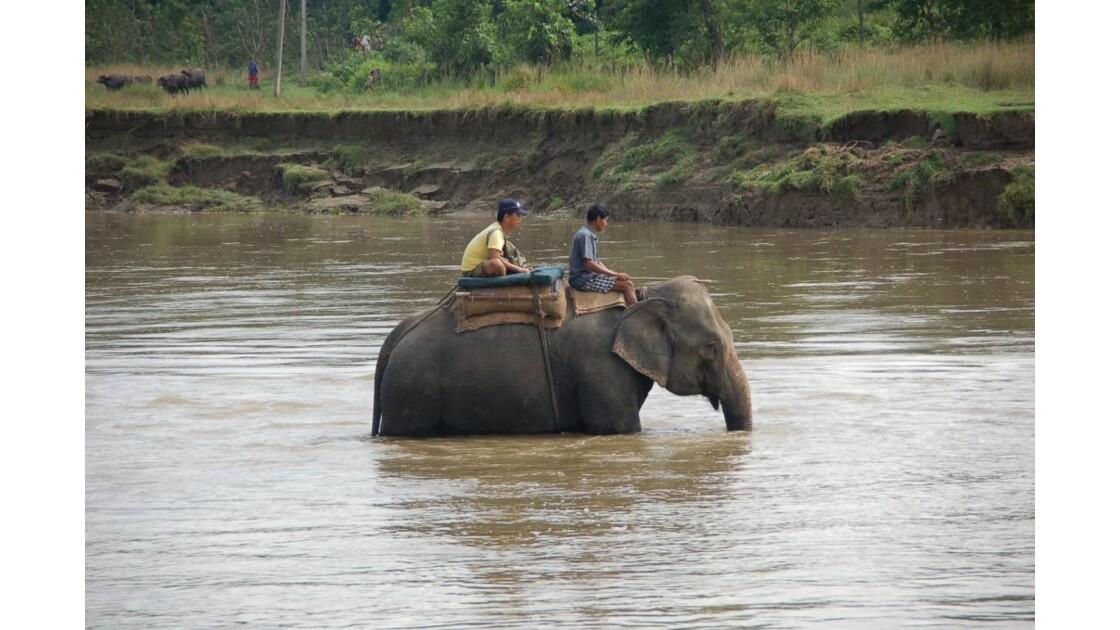 traversee de la riviere rapti