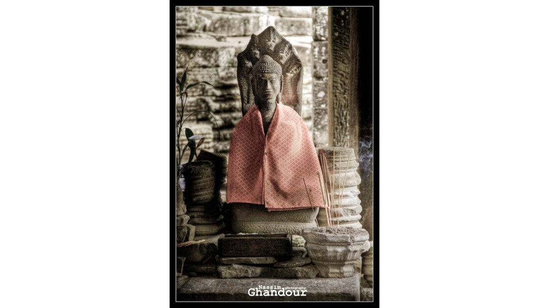 Budhha Life (2)