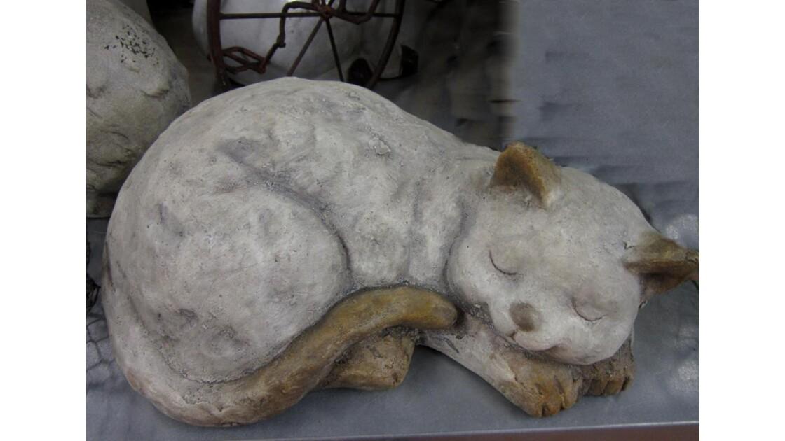 Le chat au coeur de pierre.....dort !