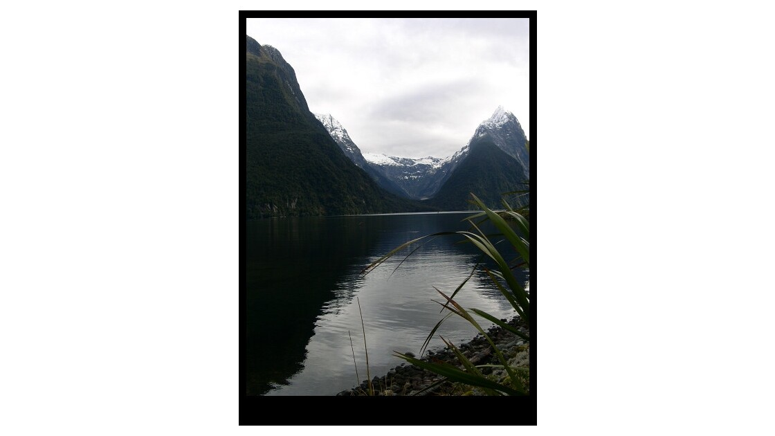 Milford Sounds, NZ
