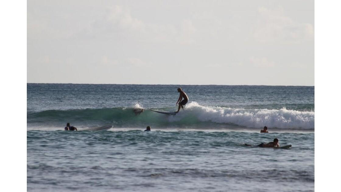 le_surf.JPG