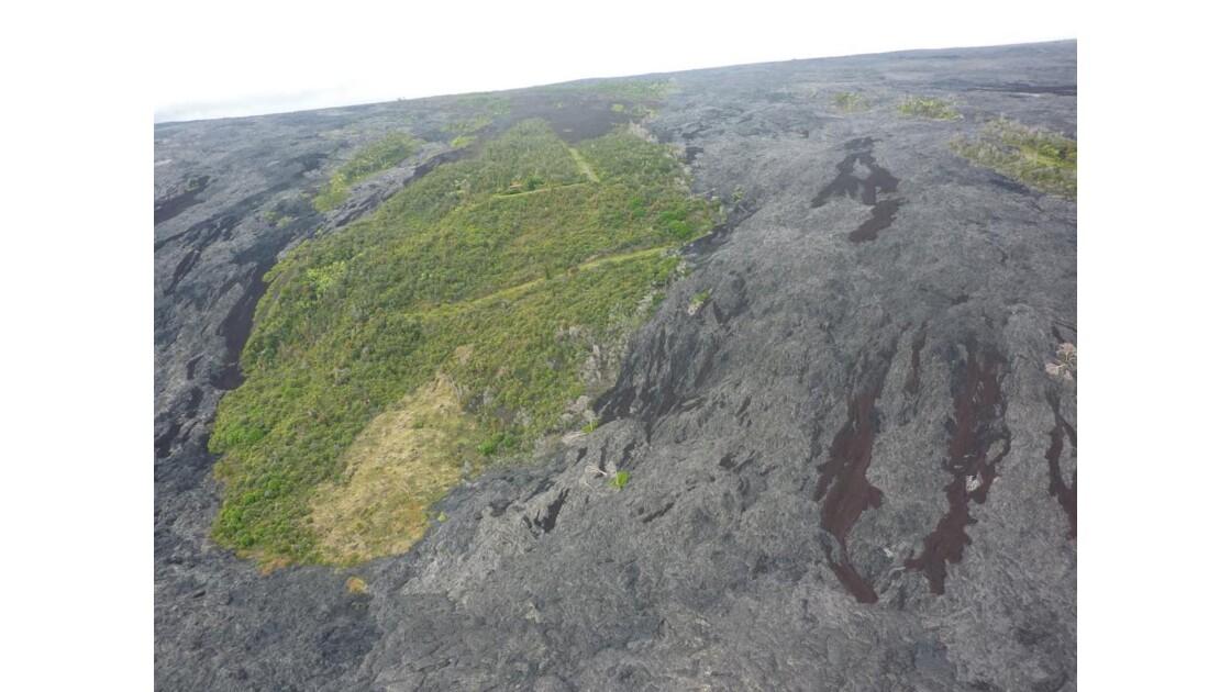 paysage_du_parc_des_volcans.JPG
