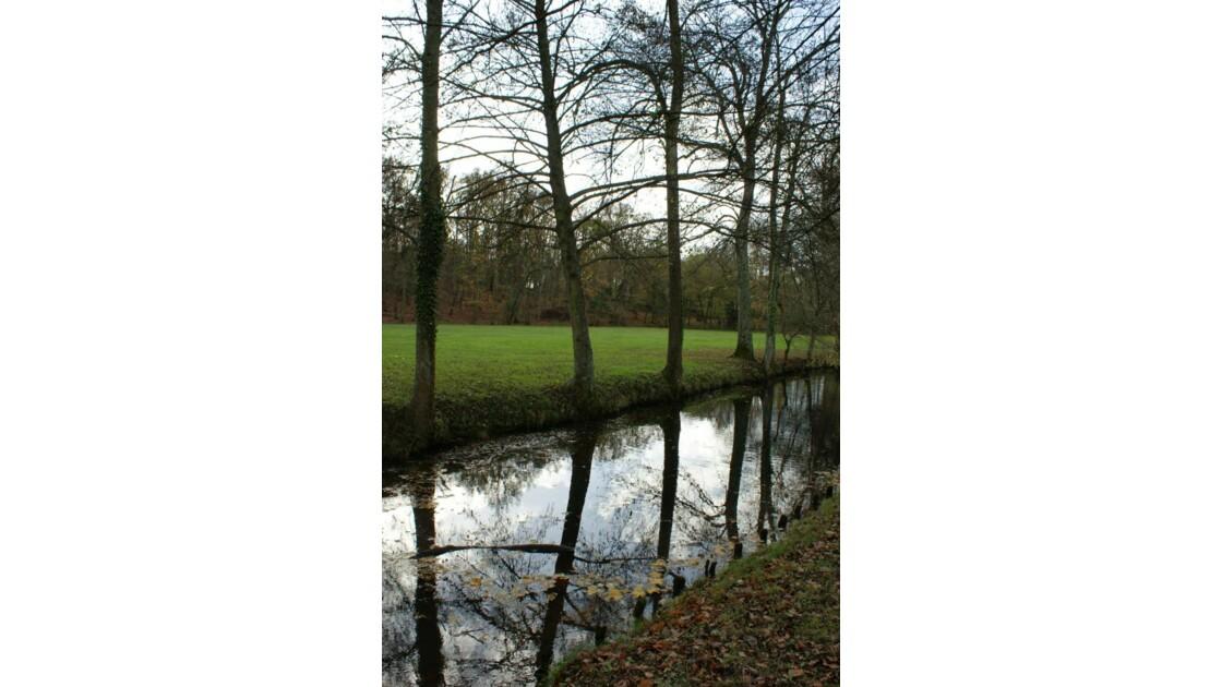Petit ruisseau dans le Parc