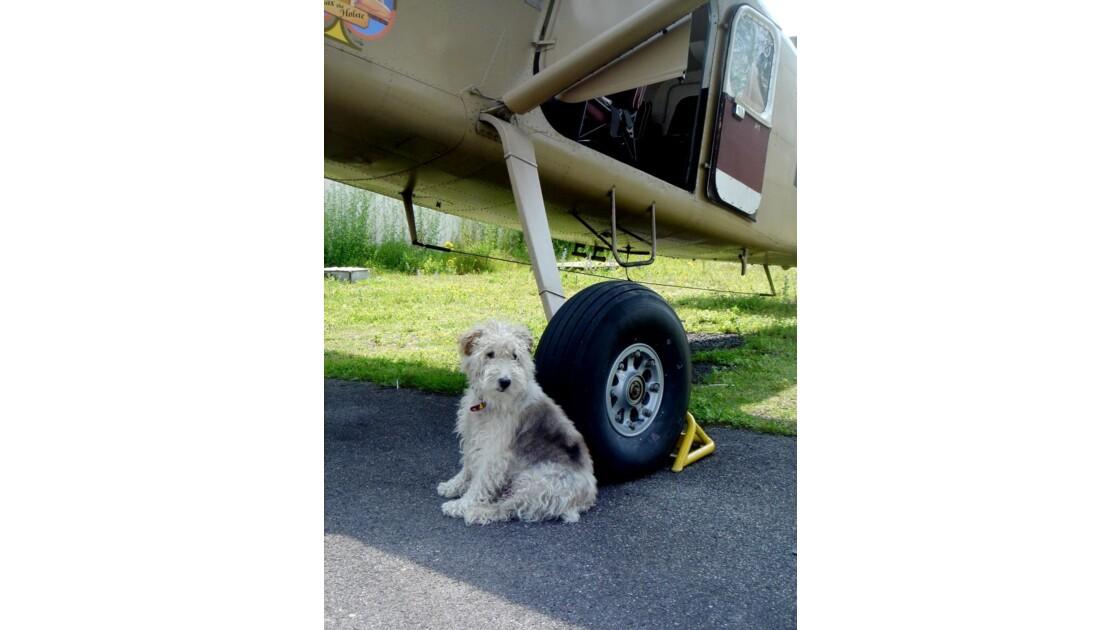 Le Pilote attend ses passagers.JPG