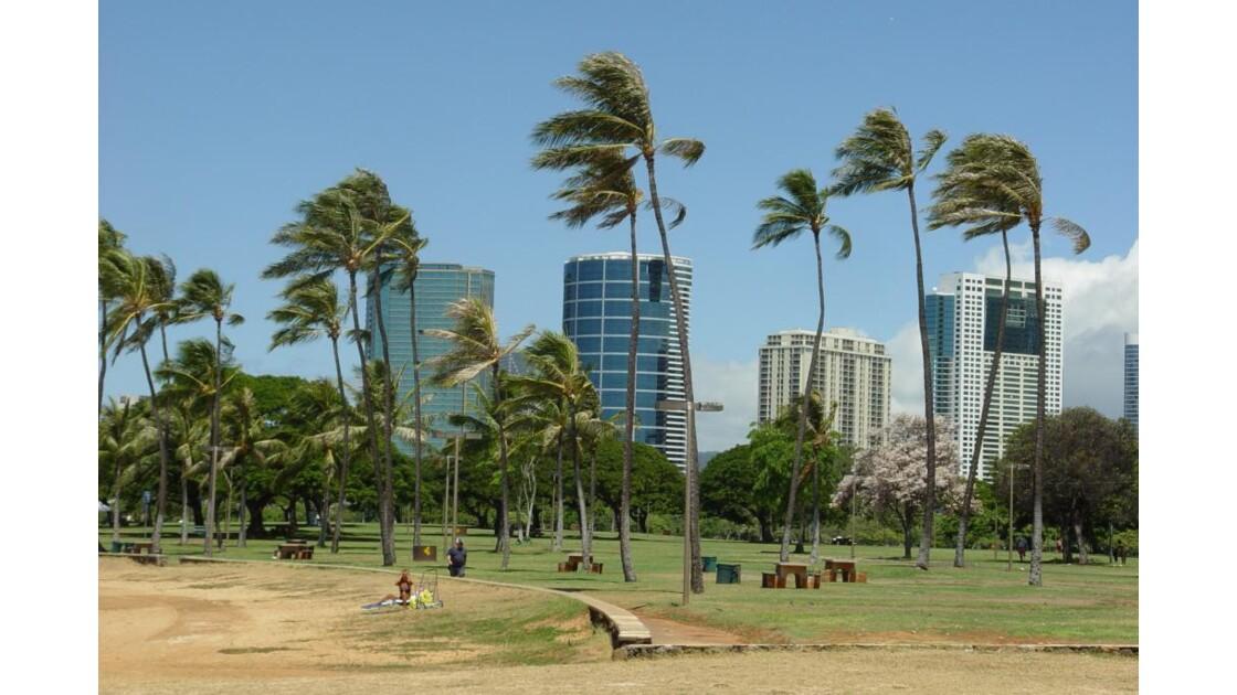 beachpark.jpg