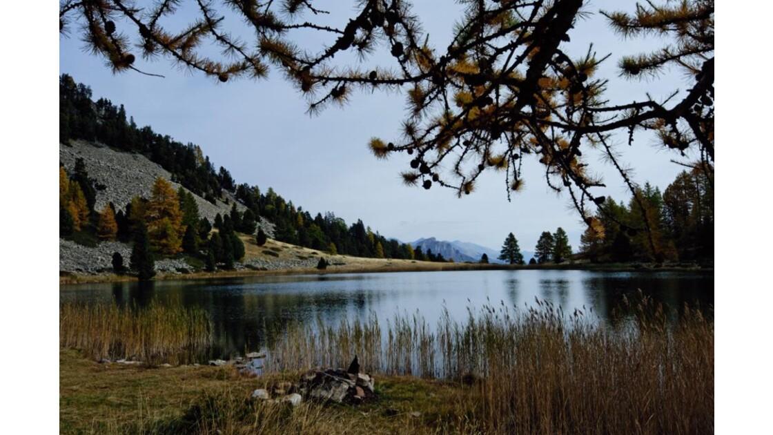 Alpes__1405_.jpg