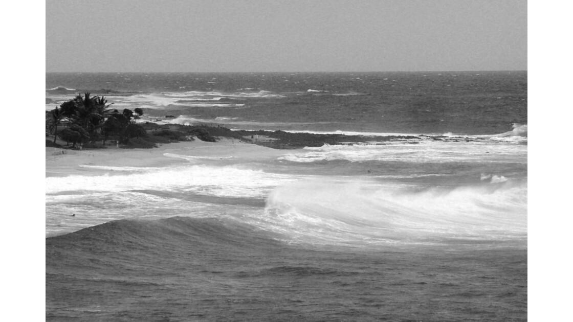 HAWAII_BEACH2.JPG