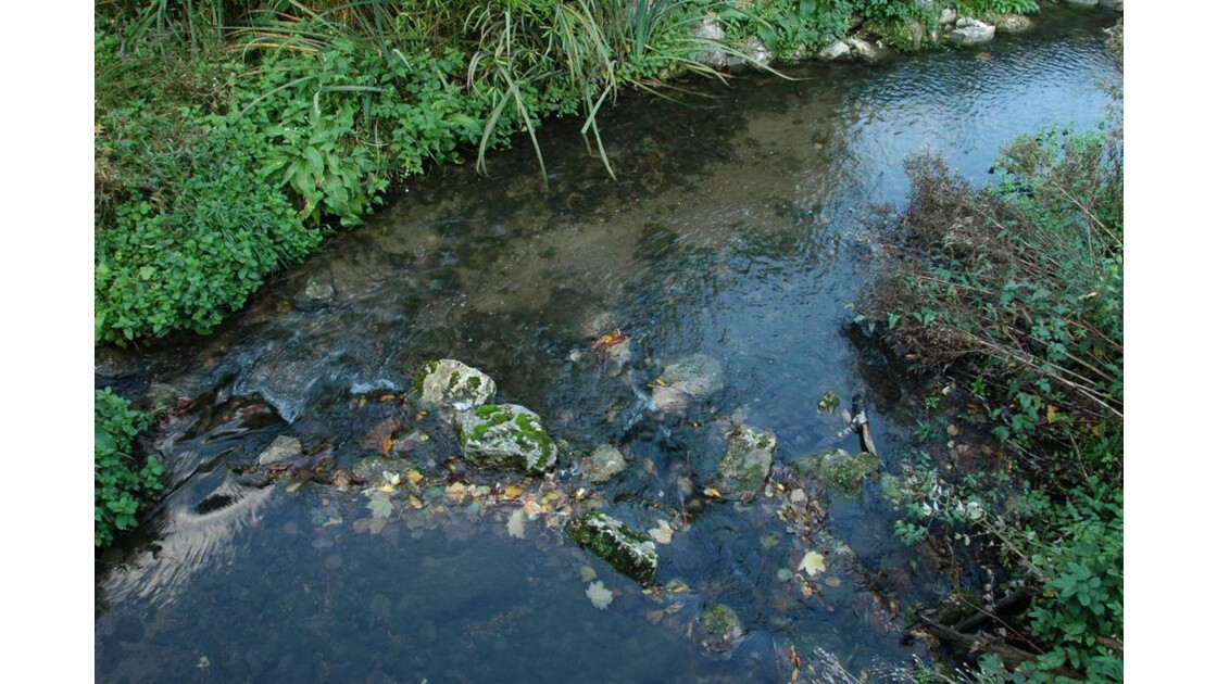 Le ruisseau du village.
