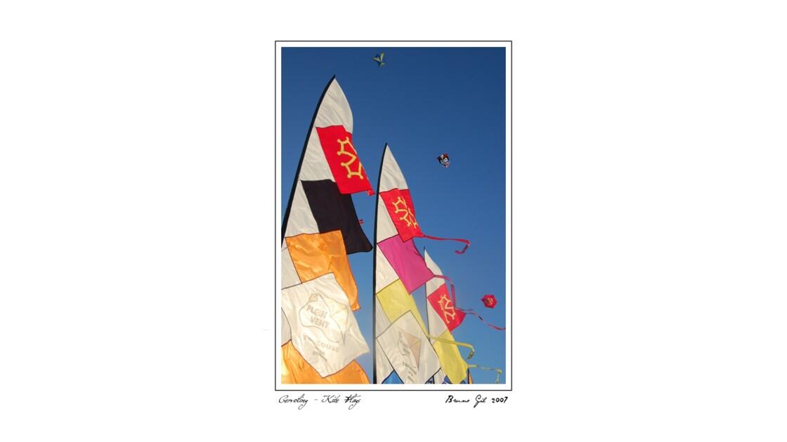 Kites Flags