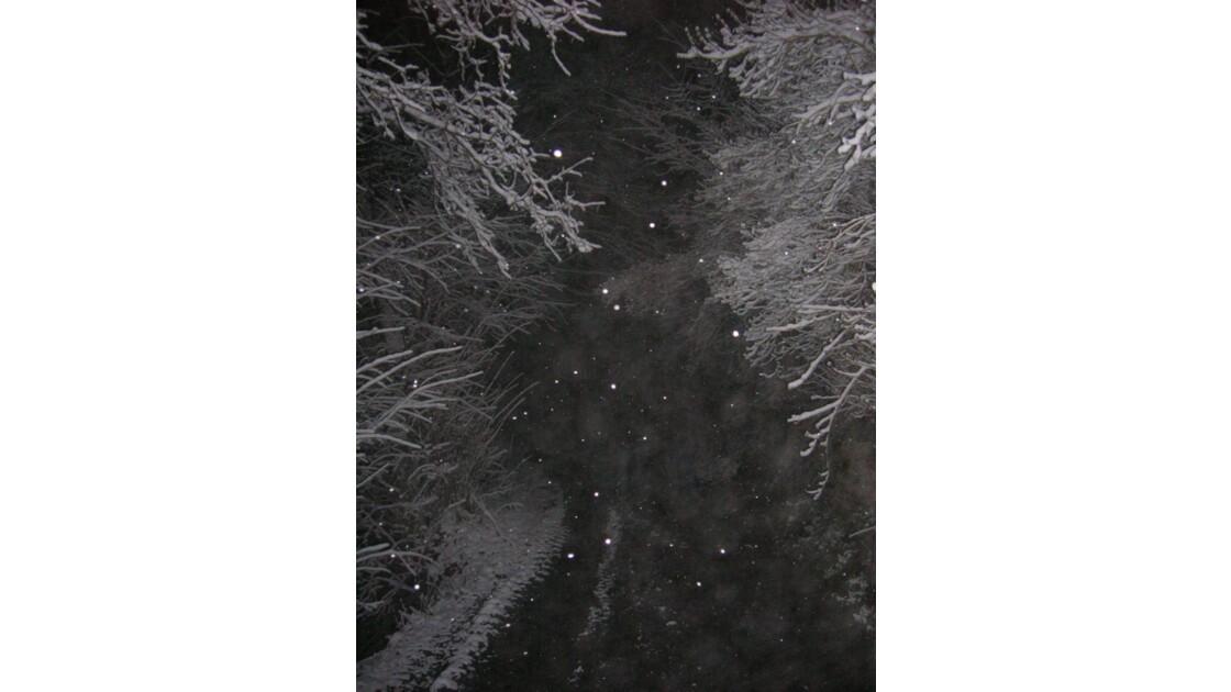 De nuit et sous la neige