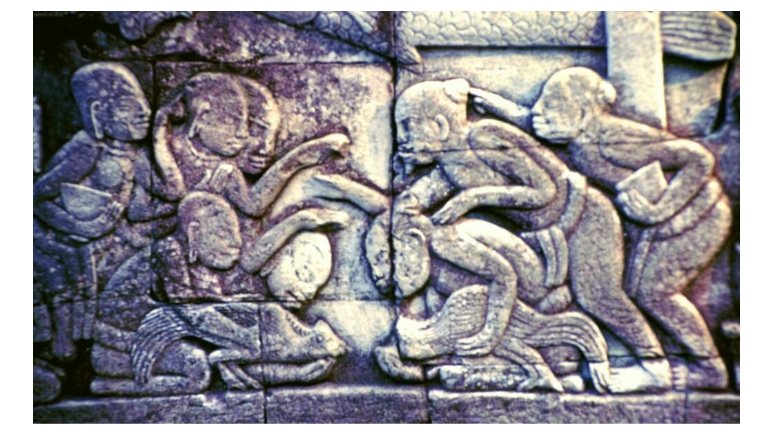 Cambodge tradition du combat de coqs2