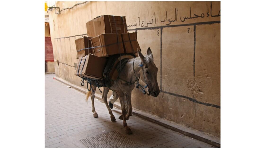 Charger la mule...