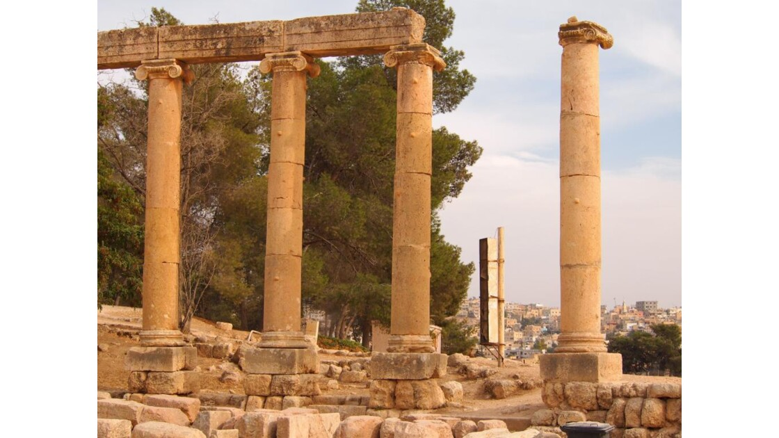 210 vestiges du temple d'Artémis .jpg