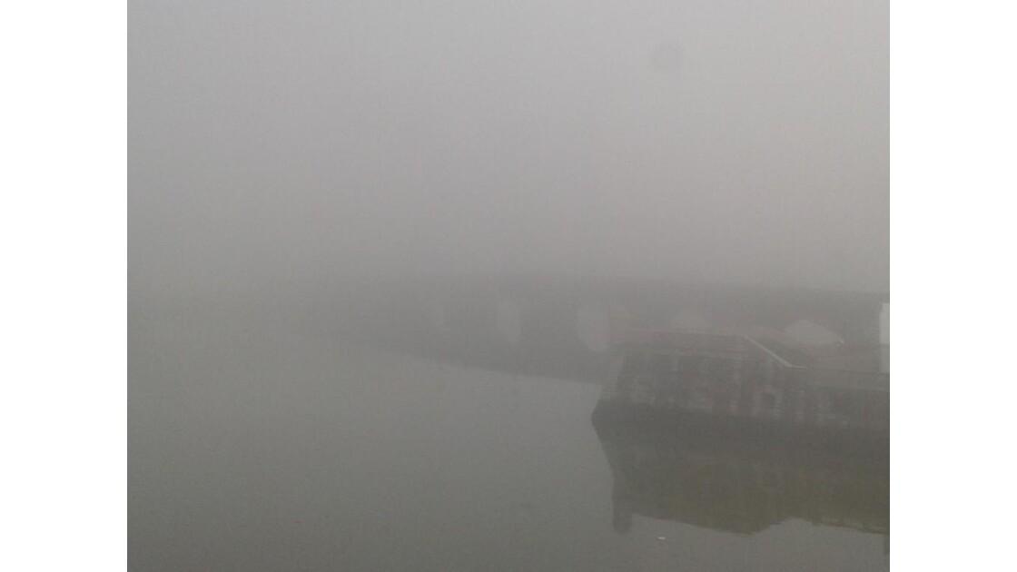 Dans le brouillard