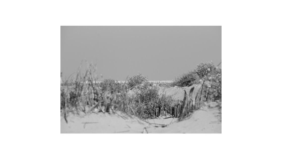 Mer du Nord 06