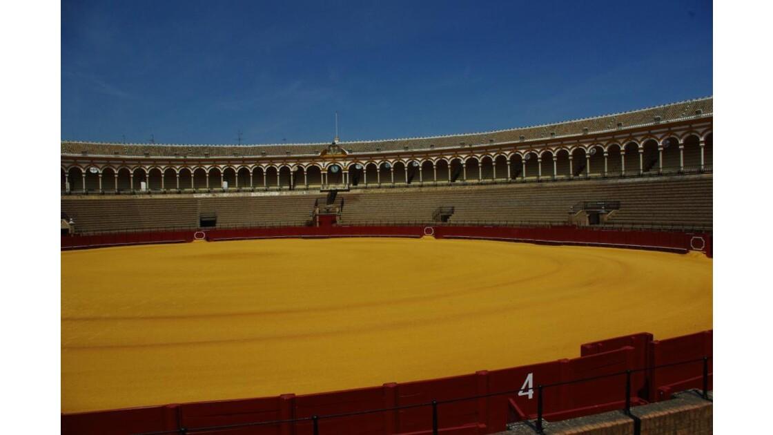 Arénes de Seville