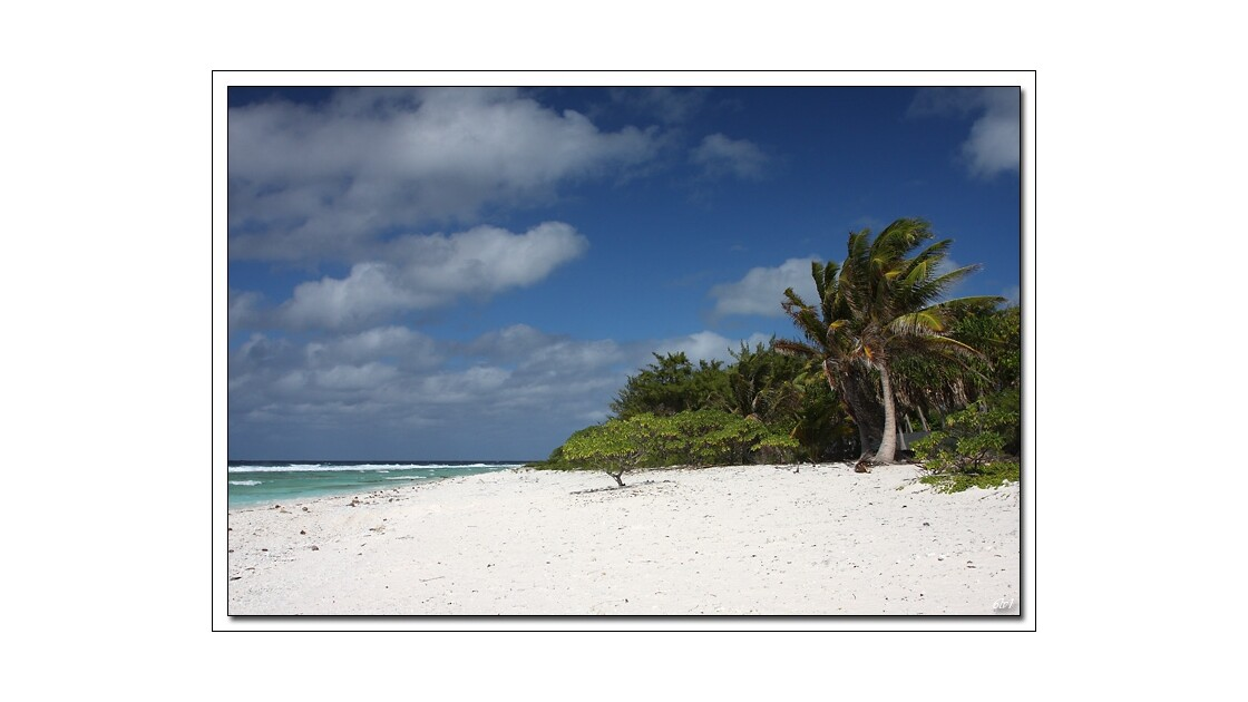 Polynésie - Rangiroa - Côté mer