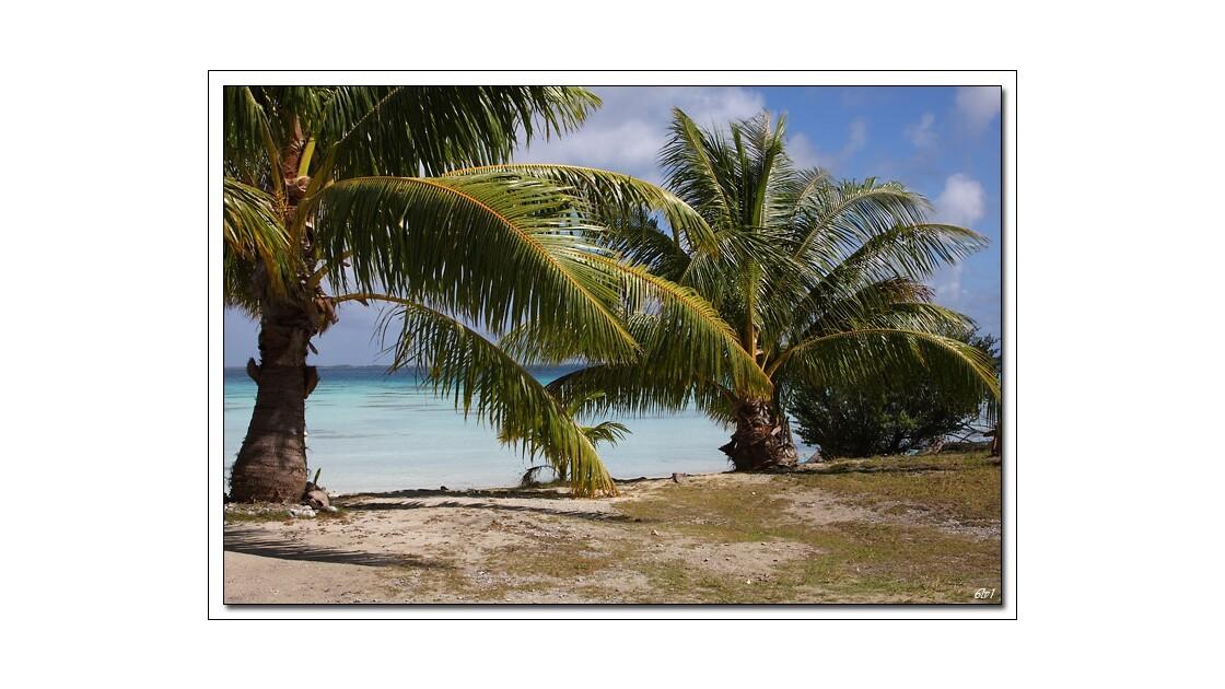 Polynésie - Fakarava - Le lagon
