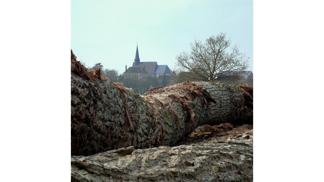 Rueil-la-Gadelière : Troncs d'arbres
