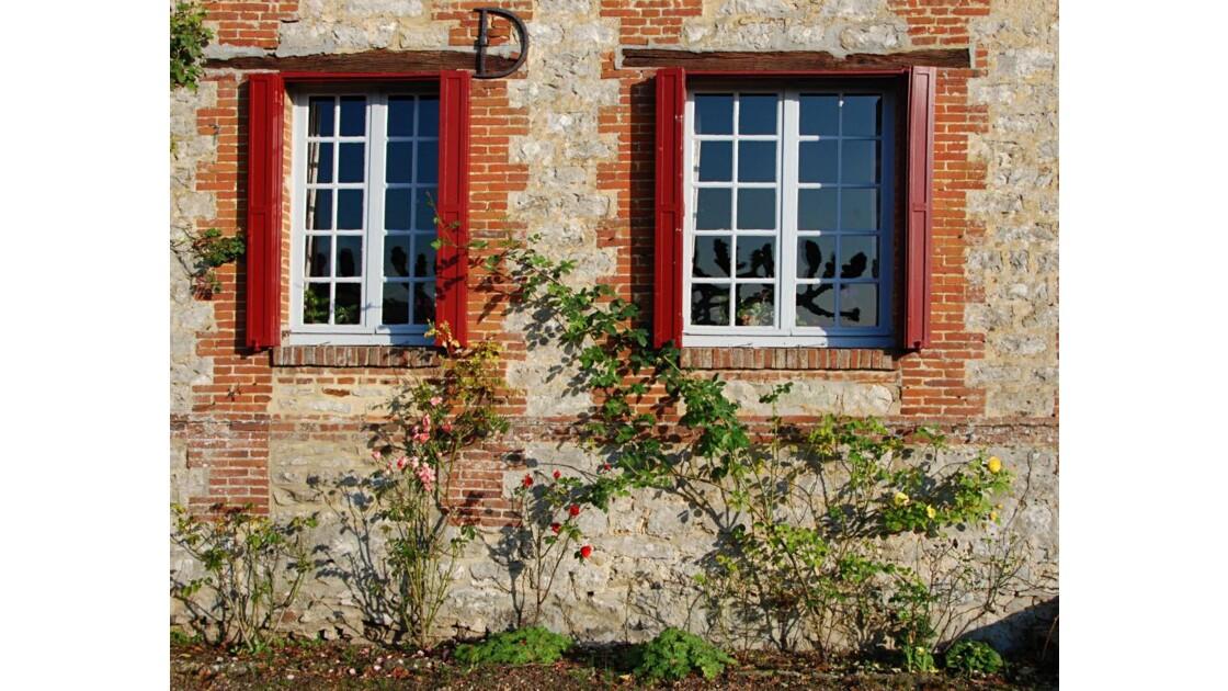 Rue des vignes