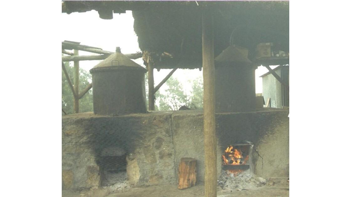 Distillerie de Géraniums