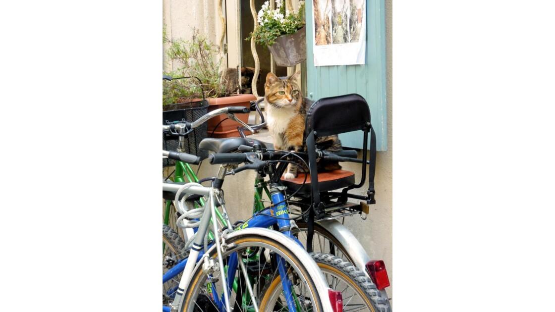 Je surveille les vélos