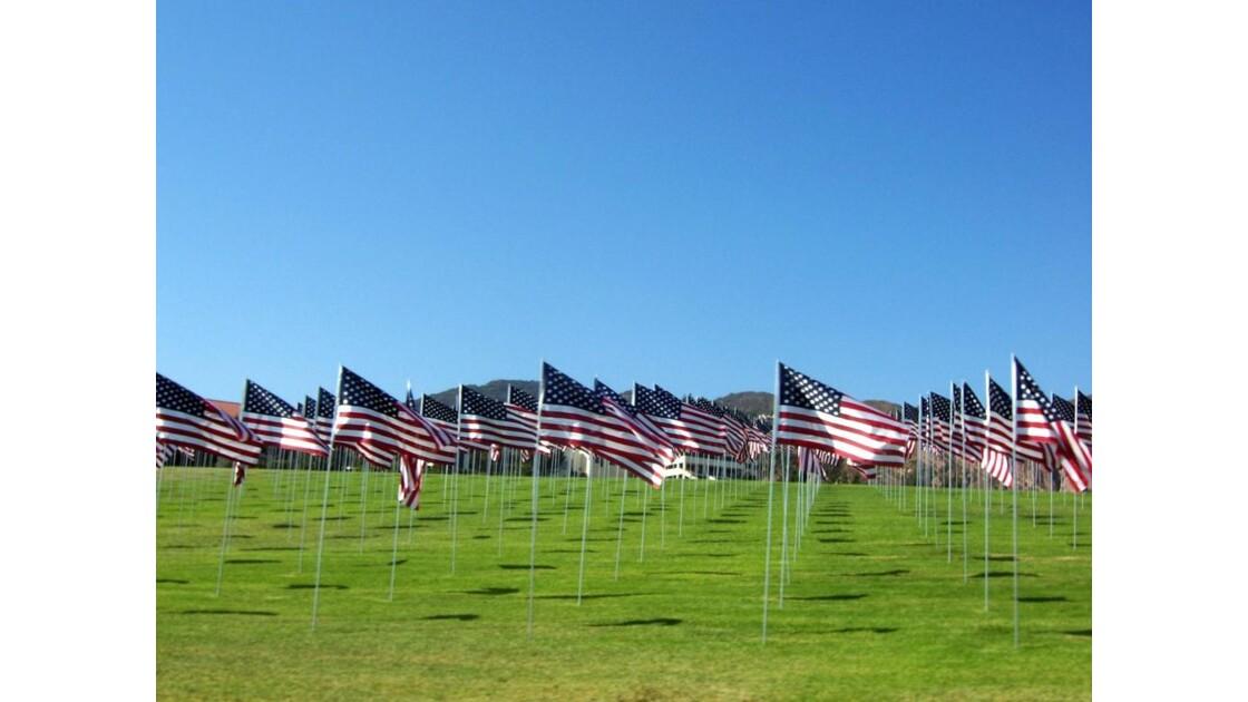 American Flagsss