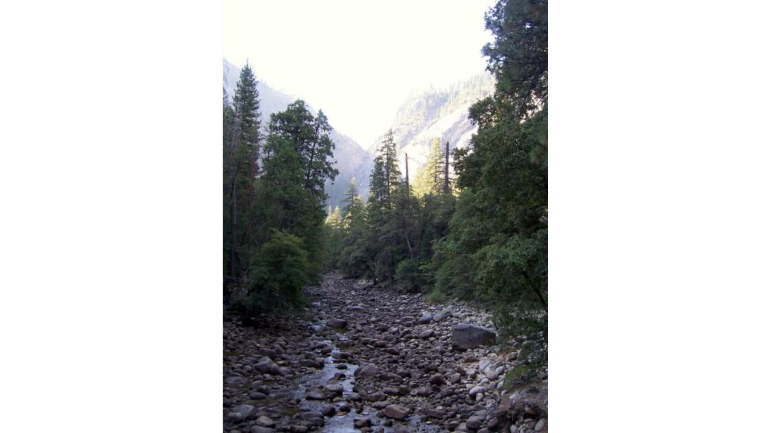 Yosemite National Park (6)