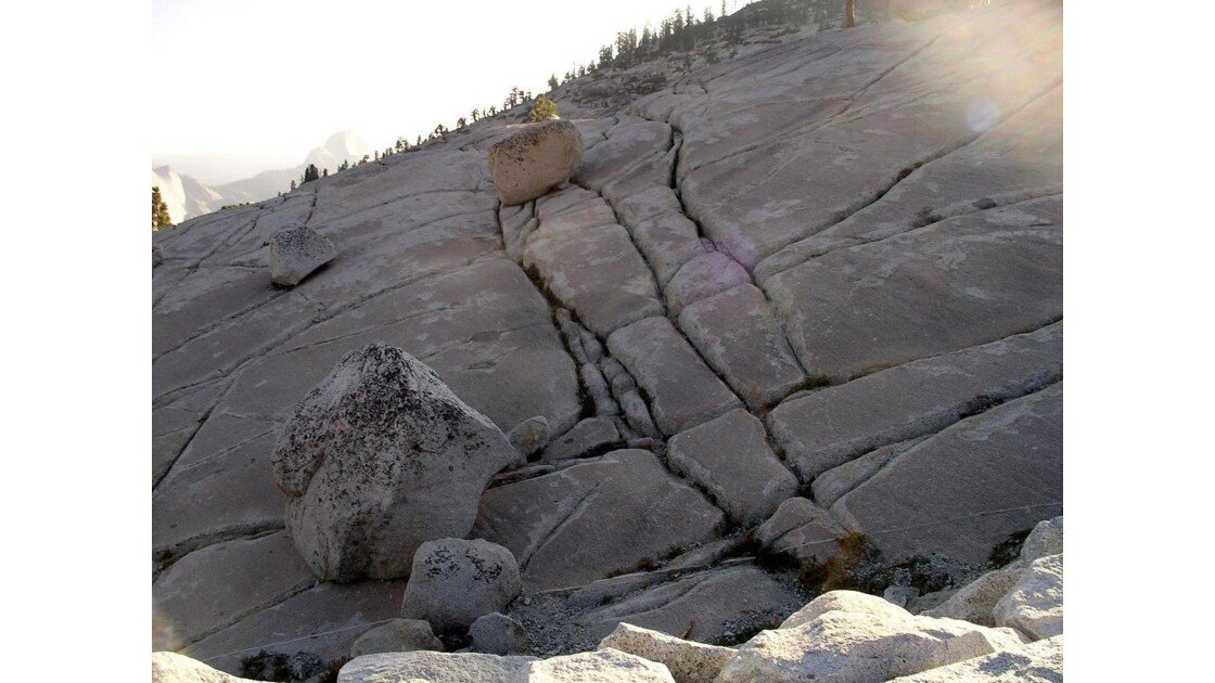 Yosemite National Park (10)