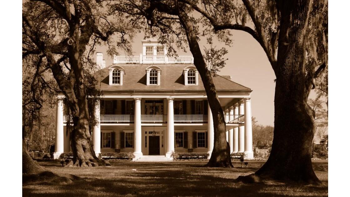 Monmouth plantation