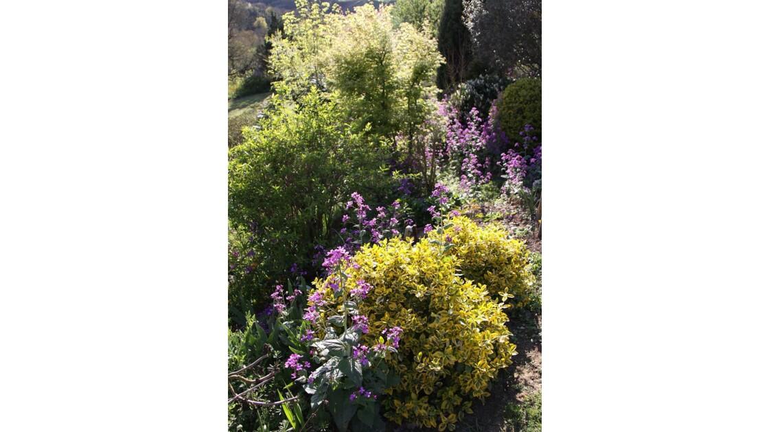 printemps au jardin