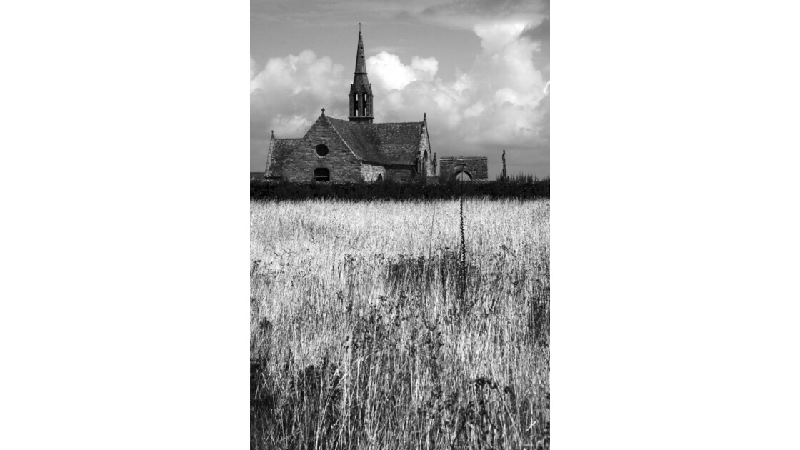 Une église dans les blés