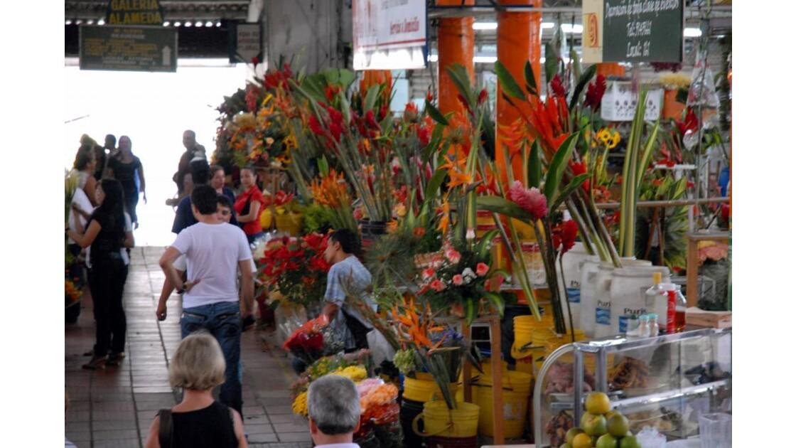 Cali marché aux fleurs 2