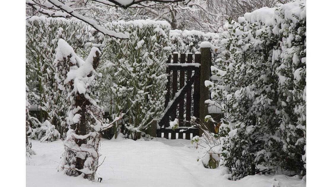 Sous la neige 1